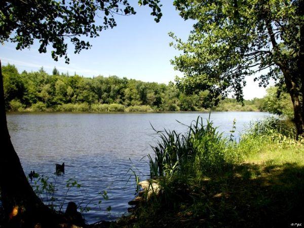 Camping Vue du Lac